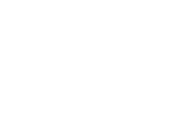 Damian Beer&Ale Logo